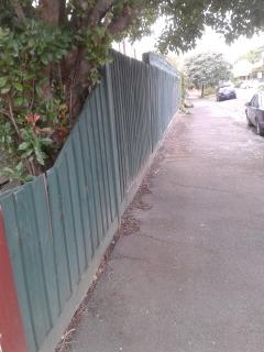 Side boundary fence South